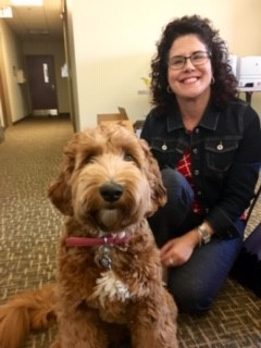 Meet Cali – the comfort therapy dog