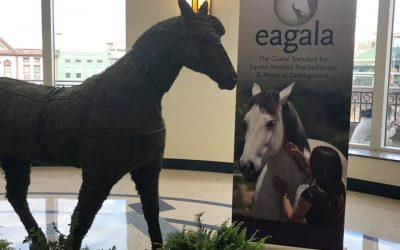 St. Mary's presents at Equine Assisted Therapy Conference